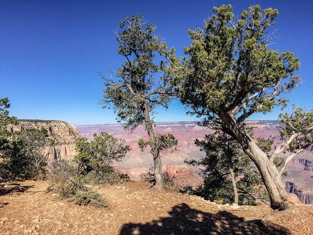 grand-canyon-uitzicht-4