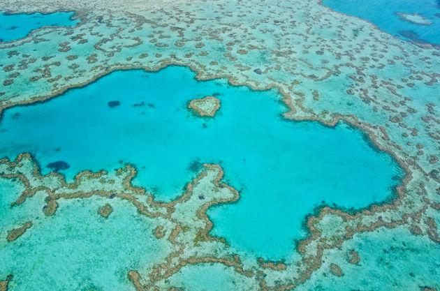 great-barrier-reef-bovenaf