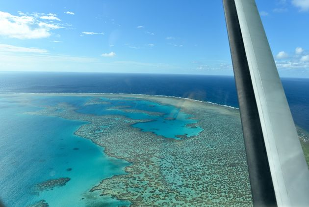 Great-Barrier-Reef-koraalrif