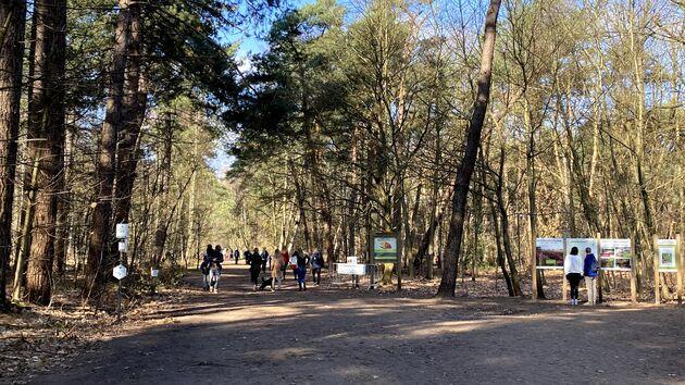 Grenspark_Kalmthoutse_Heide_ingang