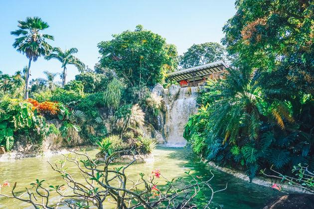 guadeloupe-botanische-tuin