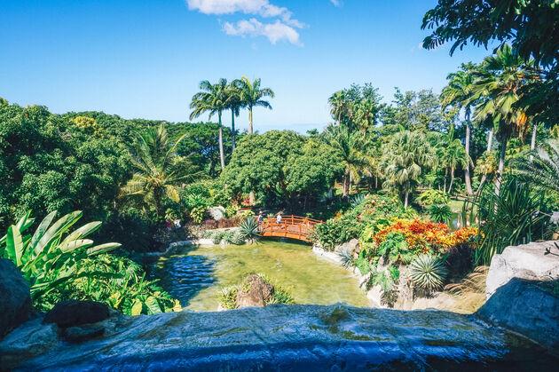 guadeloupe-foto-botanische-tuin