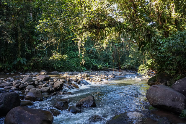 guadeloupe-parc-national