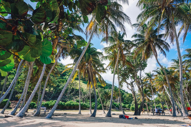 guadeloupe-stranden