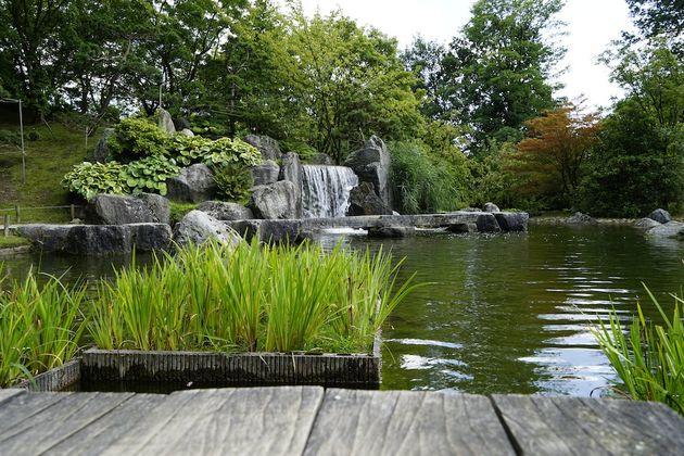 Hasselt_Japanse_tuin_waterval
