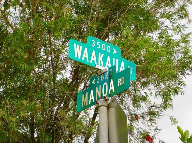 hawaii-inspiratie - 12