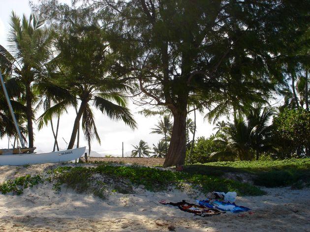 hawaii-inspiratie - 7