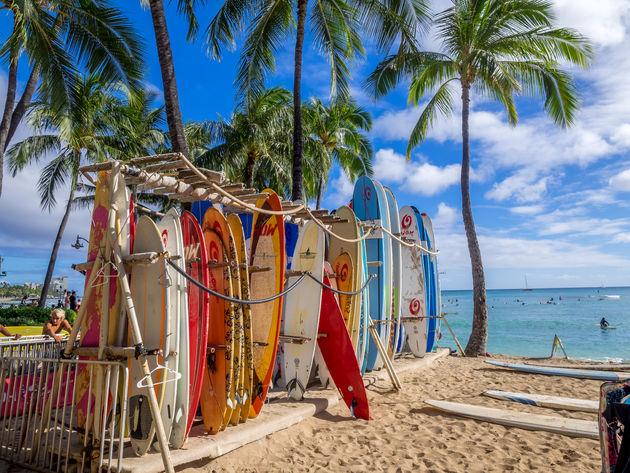 hawaii-surfen