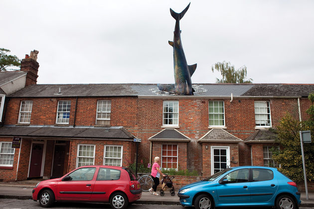 headington_shark