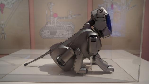 Hello_Robot_museum_Gent_1