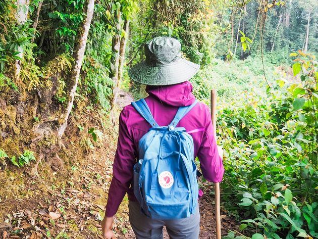 Igishigishigi trail lopen