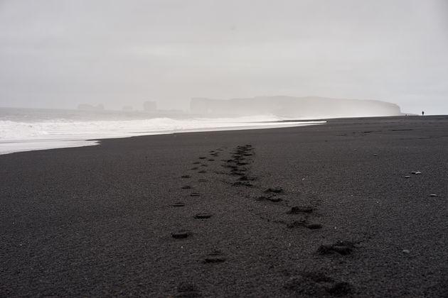 ijsland zwart strand vik
