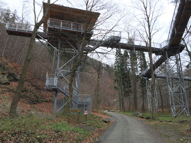 Baumwipfelpfad_Bad_Harzburg_constructie