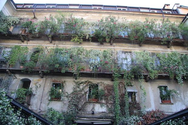 Inside Corso Como