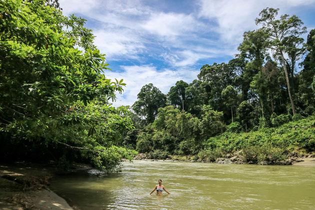 irene-zwemmen-danum-valley-rivier