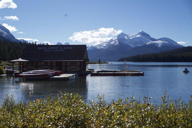 jasper-maligne-lake