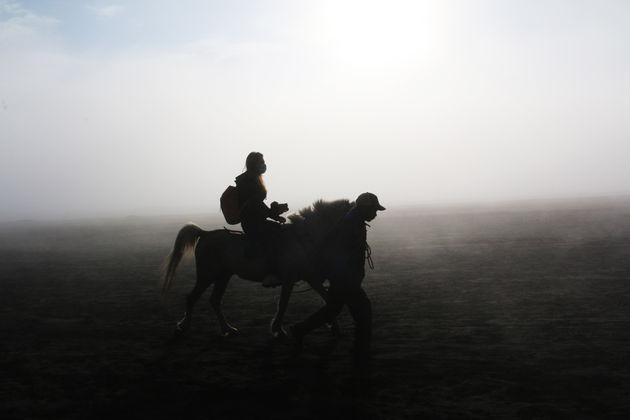 java-paardrijden