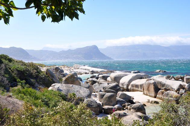 kaapstad-boulders-beach