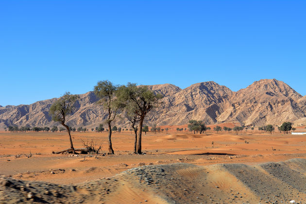 khor-al-fakkan-woestijn