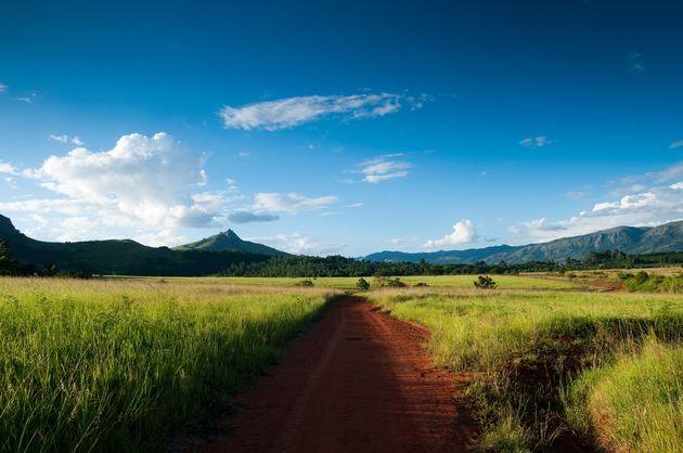 kruger_national_park_zuid_afrika