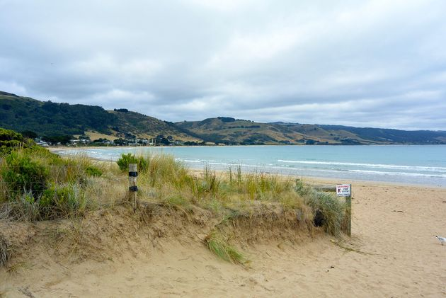 how to see great ocean road