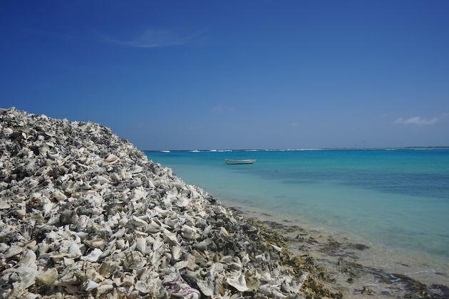 Lac-Bay-Bonaire