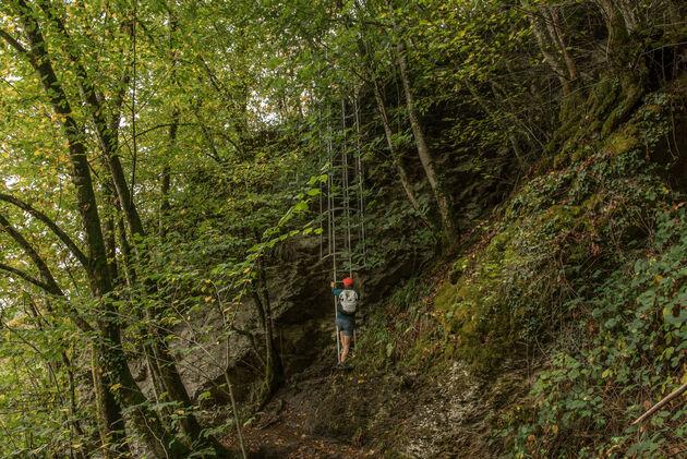 ladder-route-ardennen