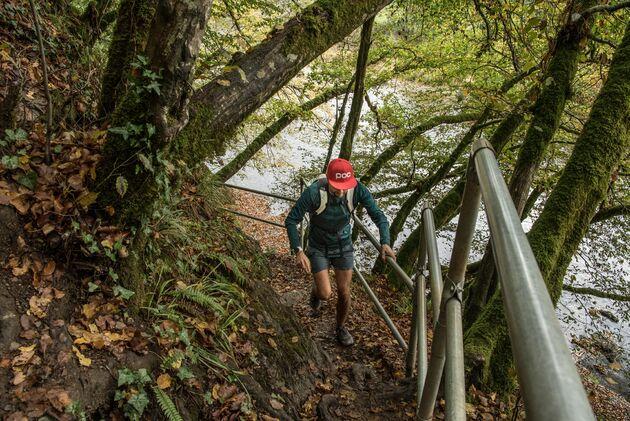 laddertjeswandeling-klim