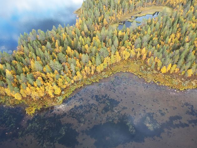 lapland-herfst-drone