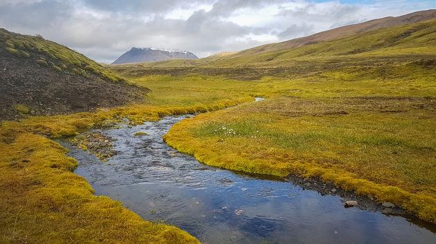 Laugavegur-trail-rivier
