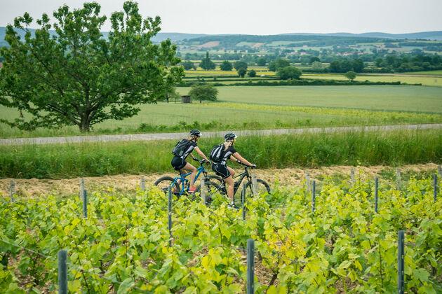Le-Tour-du-Bourgogne