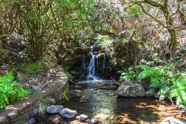 levada-do-alcerim-waterval