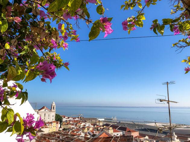 lissabon-uitzicht-bloemen