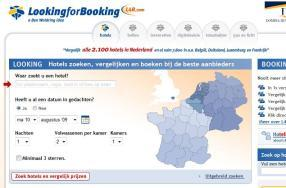 lookingbooking.jpg