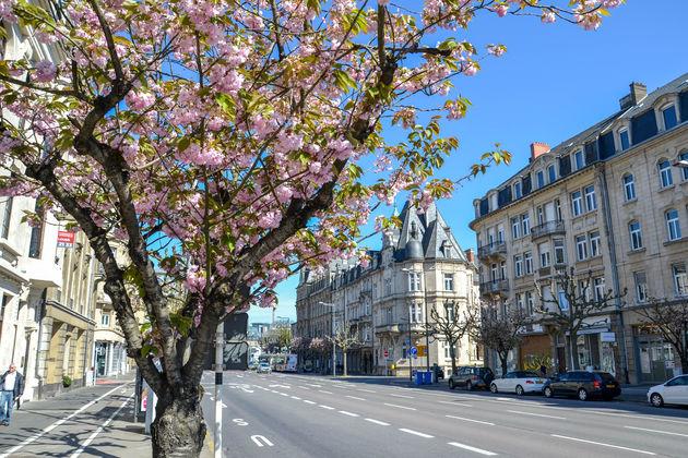 Luxemburg-stad-straatbeeld