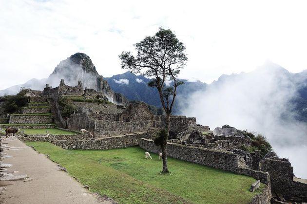 Machu-Picchu-rust