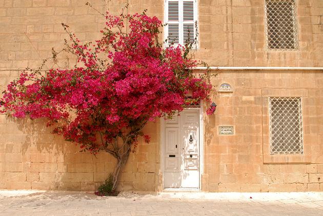 malta-facade