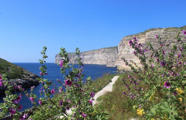 malta-groene-oase