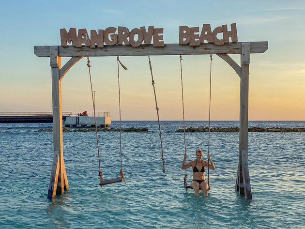 mangrove-beach