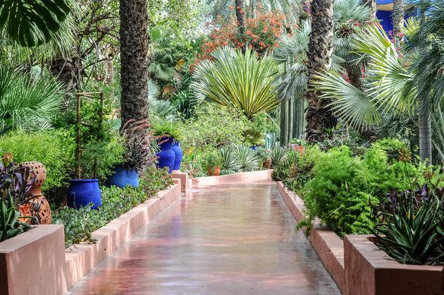 marjorelle-botanische-tuin