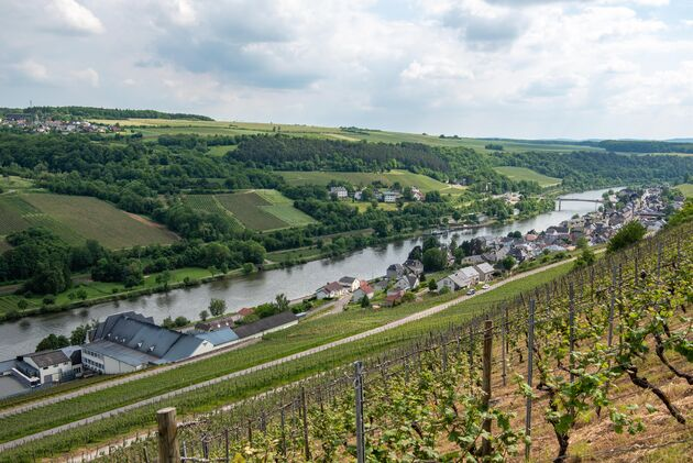 moezel-luxemburg-wormeldange