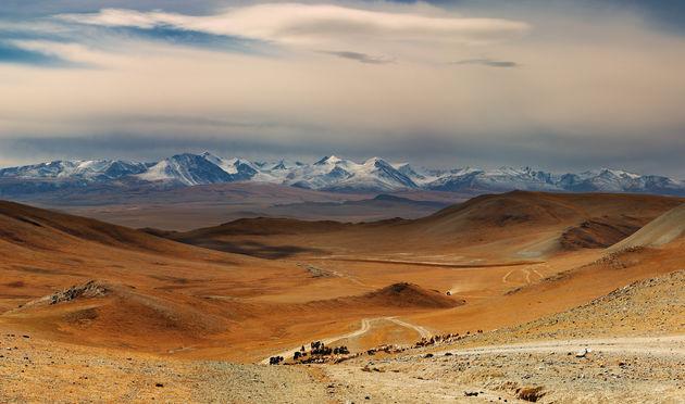 mongolië.