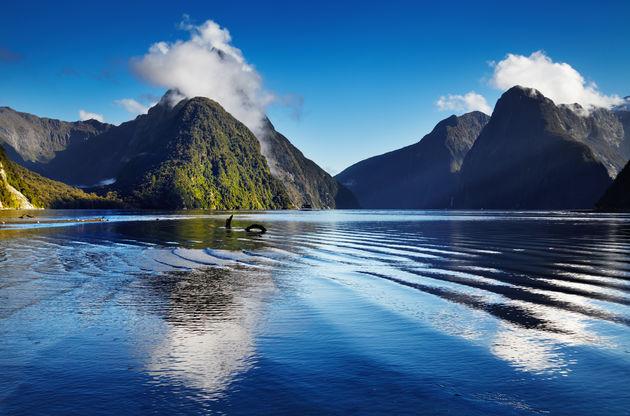 mooiste-nationale-parken-nieuw-zeeland