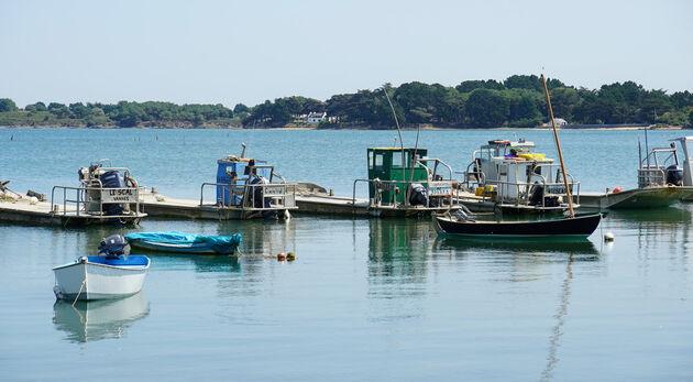 Morbihan_Port_Navolo_Oestervissers