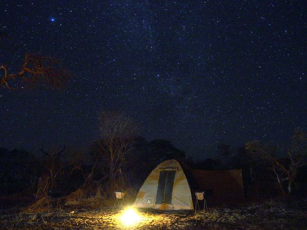 Moremi Game Reserve (7)