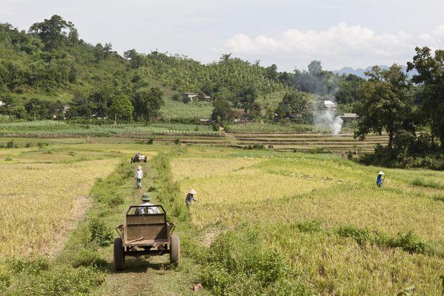 muong-vietnam