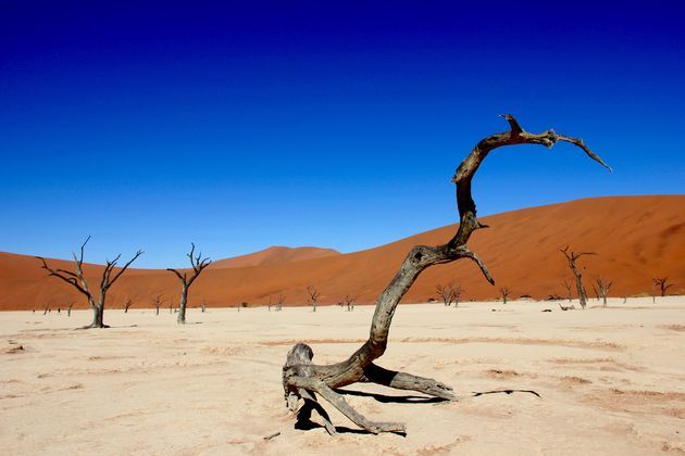 namibie-dodevlei