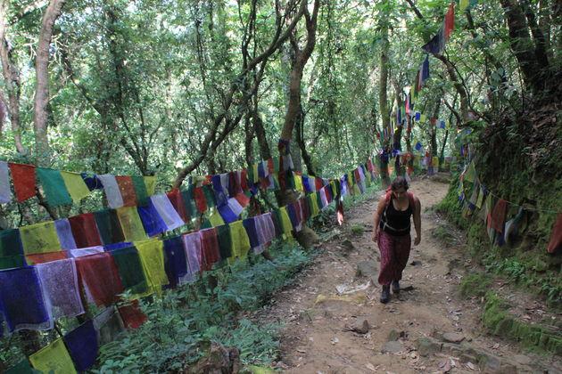 Namo Buddha 4