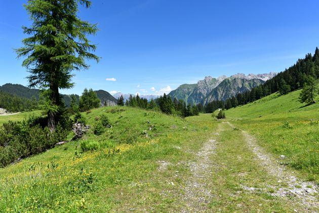 Natursprünge-Weg