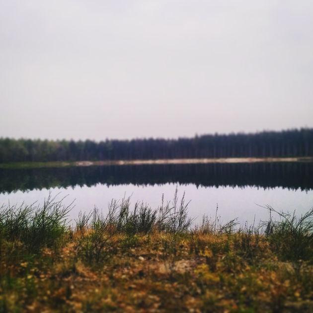 natuur-drenthe